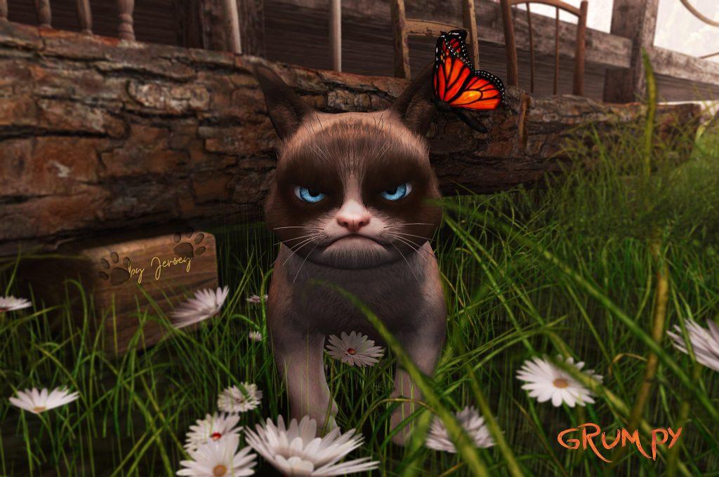 Imagen de Grmpy cat
